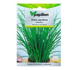 Semillas Aromaticas Cebollino (1 gramo)