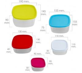 Set 5 Fiambreras Plástico Cuadraras 220 / 350 / 600 / 1200 / 2000 ml.